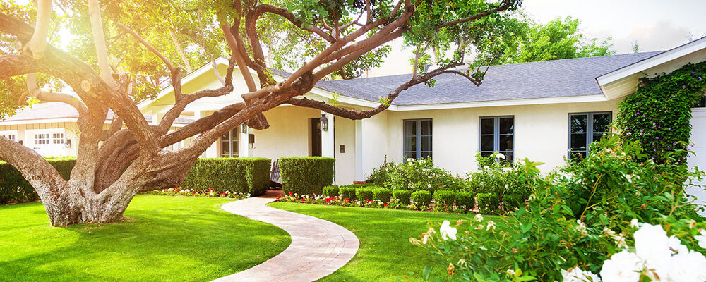 Trees for Energy-Efficient Home