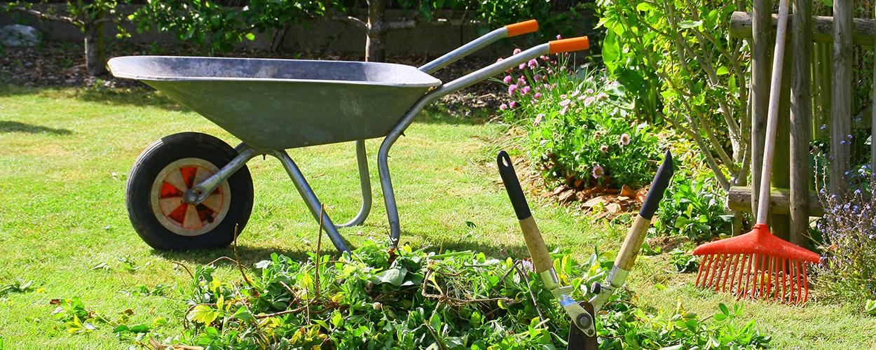 Yard work tools in backyard